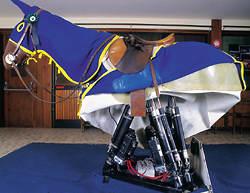 Gelungener Parcours auf virtuellem Pferd1
