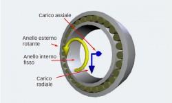 Fig. 3: Condizioni al contorno del modello rigido