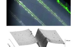 Fig. 2: upper: Multiple scratches treated with fluor-escent penetrant to make cracks and chips better visible; lower: 3D topography of a scratch shows deformation and stress release through side cracks.