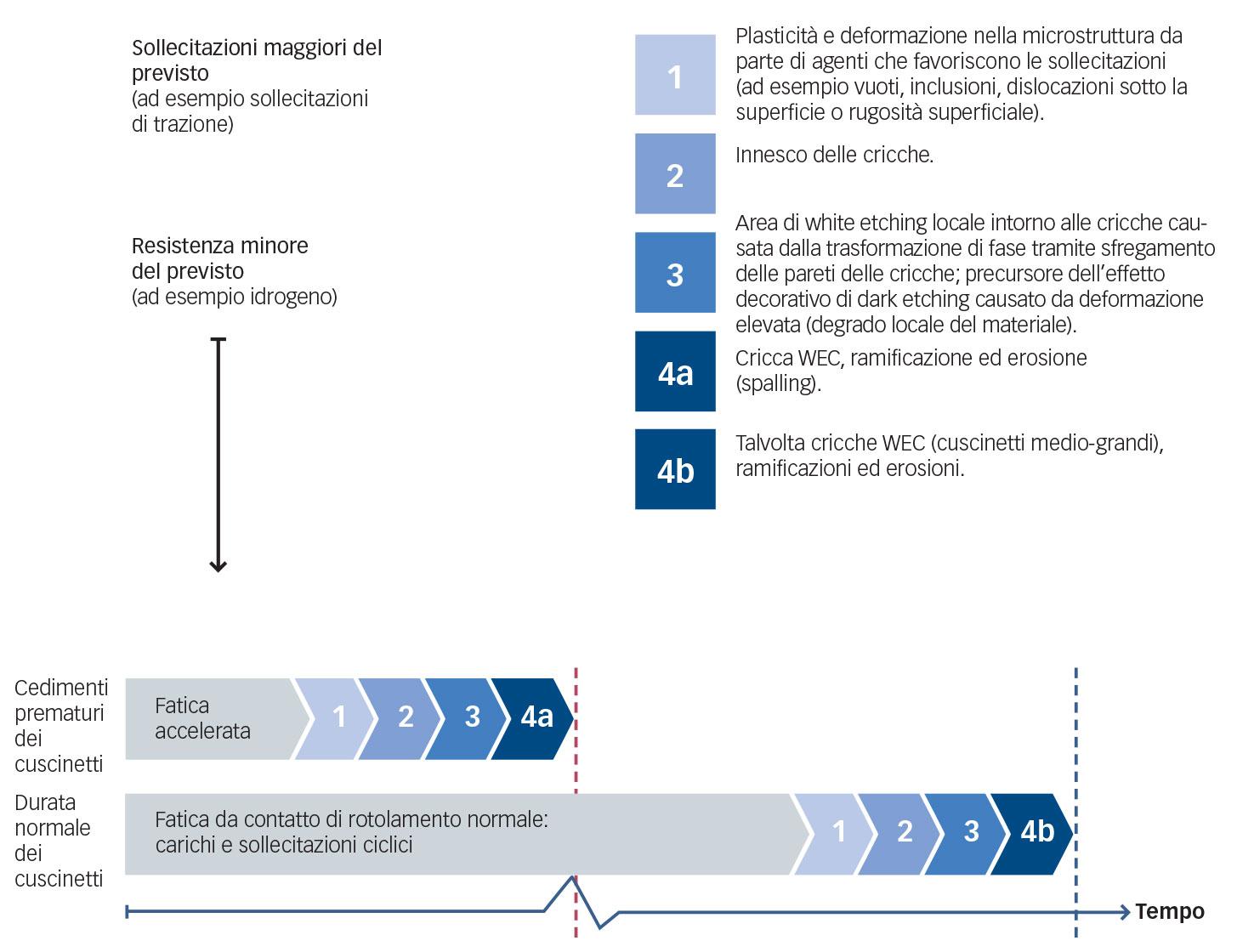 Sequenza semplificata degli eventi che portano alla formazione di cricche WEC.