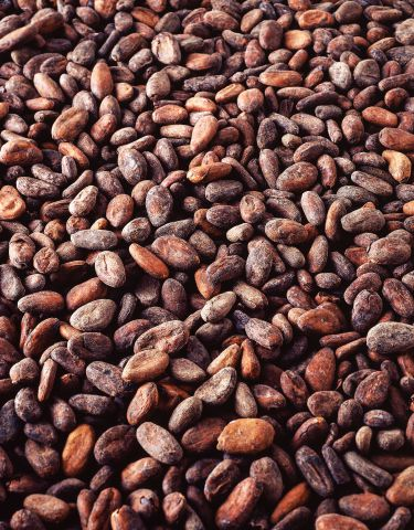 Cargill Cacao et Chocolat France