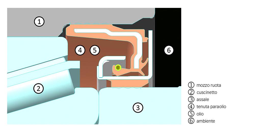 Disposizione della tenuta e del cuscinetto per terminali ruota