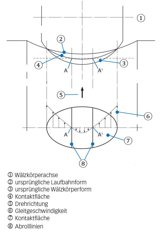 Bild 4a: Einfluss einer elastischen Verformung innerhalb eines Wälzkörper-Laufbahn-Kontakts mit einer gebogenen Kontaktfläche. Dieses Bild zeigt, wie Gleitbewegungen entstehen