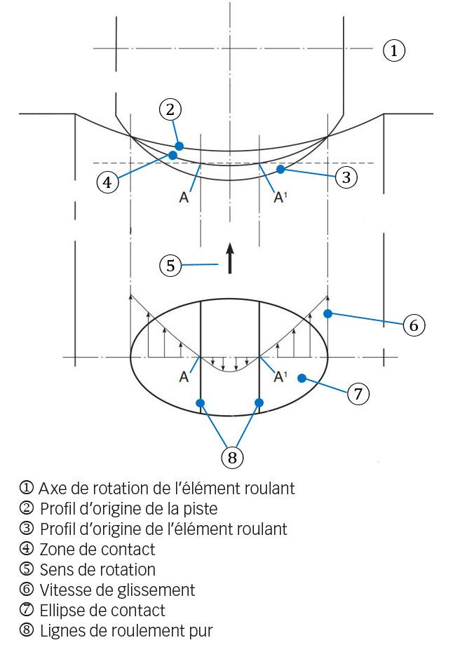 Fig. 4a. Contact piste-élément roulant avec une surface de contact courbe et influence de la déformation élastique. Cette image illustre la manière dont le glissement s'opère.