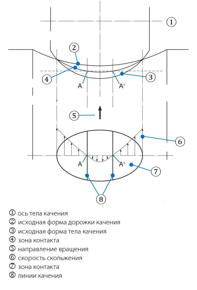 Рис. 4а: Контакт тела качения с дорожкой качения (с криволинейной контактной поверхностью) и влияние упругой деформации. На рисунке показано, как происходит скольжение.