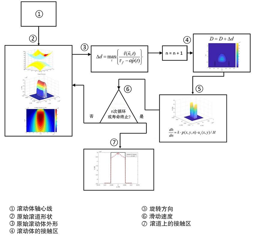 图5:滚动接触疲劳模型中对于滚道磨损需要考虑的因素。