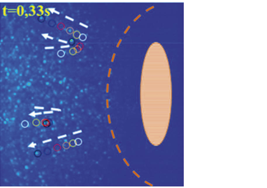 Fig. 5: µ-PIV allows tracking (circles and arrows) of solid particle pollution at the entrance of an EHL contact.