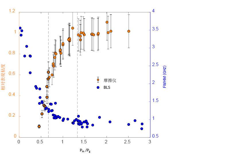 图6:摩擦试验得到的相对表观粘度(左侧纵坐标轴)和静止状态的BLS谱宽度(右侧纵坐标轴)