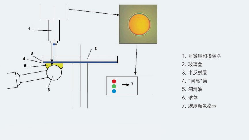 图3:SKF WAM-5摩擦计的膜厚测量接触面设置