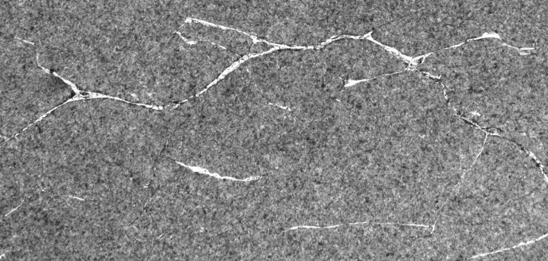 Типичная обширная сетка белых трещин травления (крупногабаритный сферический роликоподшипник).