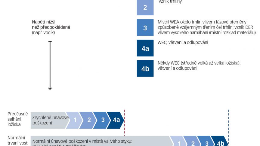 Zjednodušený řetězec událostí, který vede ke vzniku bíle naleptaných trhlin.