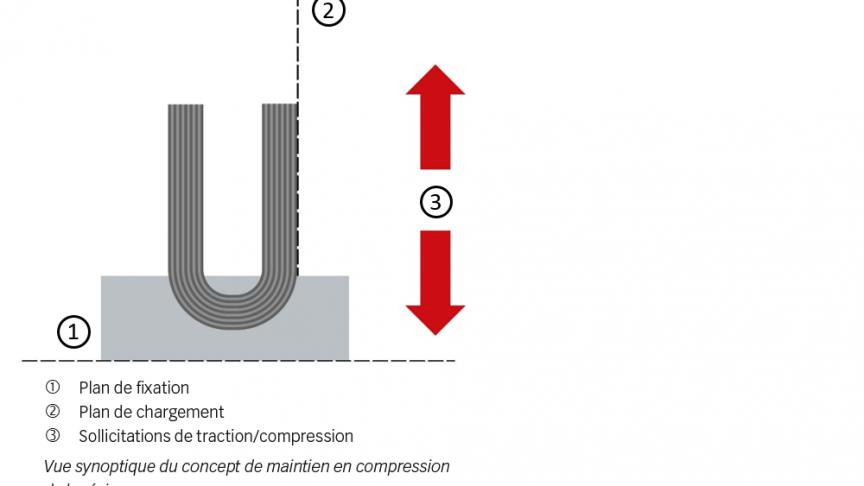 Fig. 3. Rondelle hémisphérique combinée à une semelle en fibre de carbone.