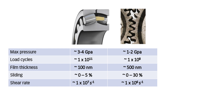 Comparison of typical conditions between contacts in rolling bearings and gears